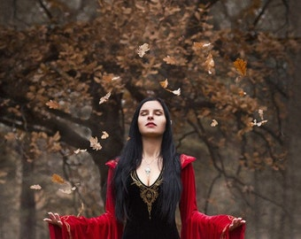 Fantasy dress, Arwen dress, elven dress, black and red fantasy dress, elf dress