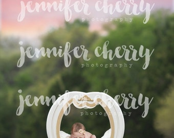 Texas Bluebonnet Digital Photography Backdrop - Baby Carriage