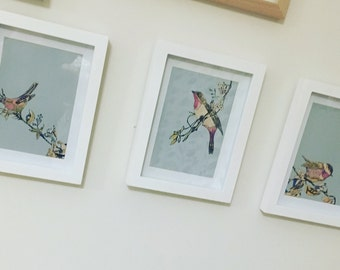 Bird print set of 3 or singularly-  framed