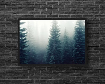 Misty Forest Photo - Evergreen Forest - Coniferous - Forest Landscape Photo - Green - Forest Print - Forest Wall Art - Forest Wall Decor