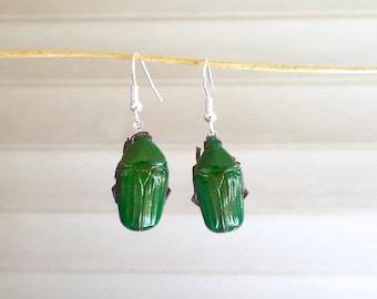 Floating Real Green Beetle Earrings Moonrise Kingdom Movie