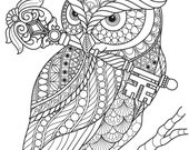 Owl with Key Coloring Page, Printable Coloring Pages, Adult Coloring Pages, Hand Drawn, Digital Illustration, INSTANT DOWNLOAD PRINT