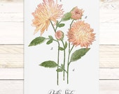 Dahlia Study - botanical watercolor wall hanging, wood trim art printed on textured cotton canvas. Vintage Science Poster chart