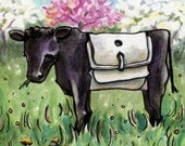 Belted Cow - 6x6 Original Framed Watercolor of Galloway Cow in Spring