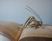 Brass Grasshopper Cricket