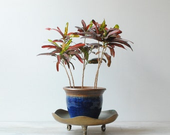 Vintage Brass Plant Stand, Plant Pedestal