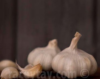 Garlic Print, Food Photography, Brown, Beige, Rustic Kichen Decor, Neutral Kitchen Art, Chef Gift