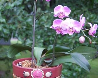 Mosaic Stones Flower Pot  Planter on Terracotta
