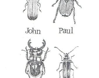 Meet The Beetles Card | Funny Vintage Insects Beatles Humor Science Birthday Bugs Biology Pun Nerdy Weird Music Men Women