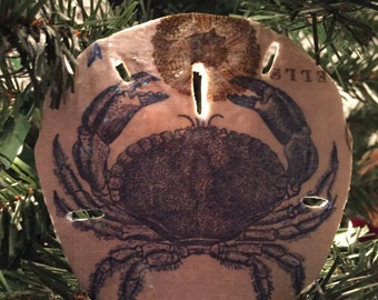 Sand Dollar Ornament  - Nautical Design