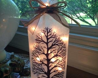 Lighted Bottles, bare trees, tree, lighted wine bottles, wine bottle lamps, wine bottle lamp, lamp, lighted bottle, Trees,lighting,