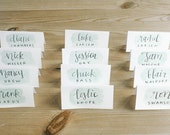 CALLIGRAPHY PLACE CARDS, custom styled with watercolor wash, style #10 - custom for parker - wedding, event, escort cards, name card, dinner