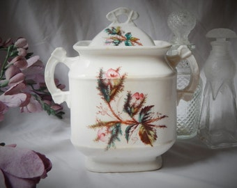 LOVELY~Antique 1870s ~KTK~ Knowles, Taylor & Knowles 'Moss Rose' Ironstone China~ Covered Jar
