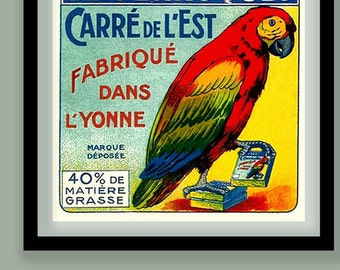 Vintage French Cheese Label Print. Parrot poster. Parrot wall art . Vintage food label. Square print . Vintage bird art. French print