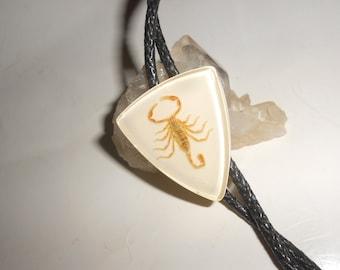 "Scorpion Bolo Tie Arizona Deadly Arachnid Specimen Vintage Lucite Classic Western Wear ""Rockabilly Dangerous"""