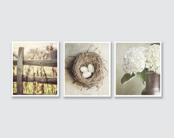 Shabby Chic Home Decor Print or Canvas Art Set, Beige Decor Print Set of 3 Prints, Neutral Wall Art, Cottage Decor Ivory Tan Cream.