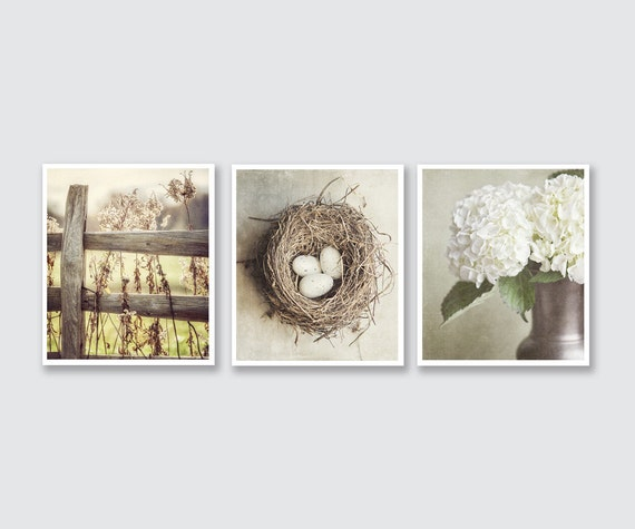 Shabby Chic Home Decor Print or Canvas Art Set, Beige Decor Print Set of 3 Prints, Neutral Wall Art, Cottage Decor Ivory Tan Cream.
