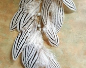 Funky, Far Out Pheasant Feather Ear Cuff