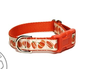 "Little Pumpkins - 3/4"" (19mm) Wide - Fall Dog Collar - Thanksgiving - Your choice of collar style and size - Martingale or Side Release"
