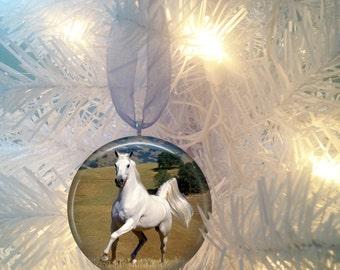 Horse #5 Christmas Tree Ornament