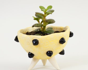 Black & Yellow Pottery Planter Modern Quirky Ceramic Planter ~ Plant Pot Cactus Planter Spiky Ceramics ~ Ceramic Bowl Sculptural Planter