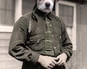 The Aviator, Vintage Dog Print, Anthropomorphism, Dog Art, Whimsical Dog Print, Photo Collage, Gift for a pilot, Funny Animal Print
