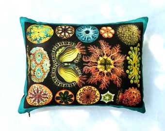 ON SALE: Haeckel's Ascidiae Sea Life Pillow Cover - Vintage Natural Science Art on Fabric