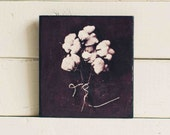 Wood Print: Cotton Bouquet Printed on Wood, Nature Photography, The South, Alabama Snow, Rustic Industrial Home Decor,  Country Kitchen