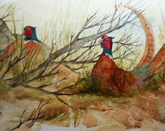 pheasant wildlife nature original watercolor
