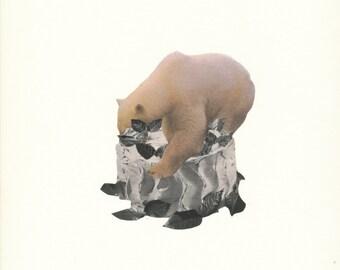 Happy Birthday Bear Surreal Collage