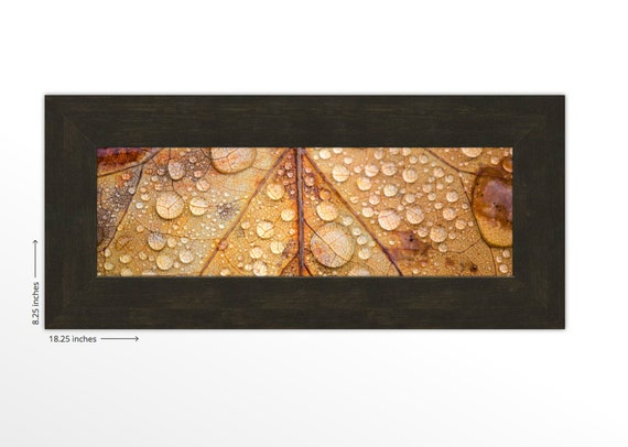 Macro Brown Fall Leaf with Rain Drops. Nature Photography. Framed Print. FREE SHIPPING.