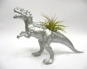 Silver Ceratosaurus Dinosaur Planter with Air Plant // Coworker Gift // For Her // For Him