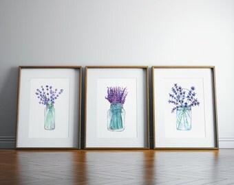 lavender plant etsy