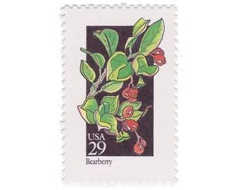 10 Unused Vintage Postage Stamps - 1992 29c Wildflower Series - Bearberry - Item No. 2687