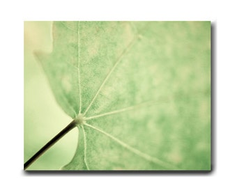 Leaf art, minimalist canvas photography, pale green leaf canvas picture, canvas wall art, sage pale green wall decor, modern nature wall art
