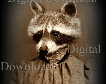 Mrs. Raccoon Digital Download Photo