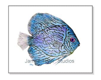 Tropical Fish Art Tropical Fish Painting Blue Fish Print. Fish Watercolor Painting Ocean Art Ocean Decor Beach Art Beach Decor Sea Art Print
