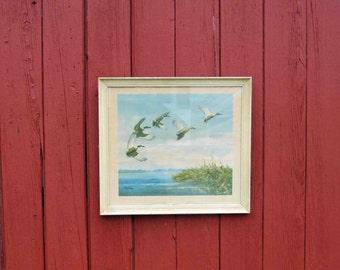 vintage richard e bishop framed art print ducks lannding in marsh area