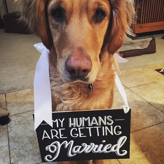 FREE SHIPPING - My Humans are Getting Married Engagement Sign, Chalkboard, Engagement Chalkboard, Dog Sign, Wedding Sign, Custom Chalkboard