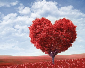 Valentines Backdrop / Photography Backdrop / Tree Backdrops / Heart Backdrop / Nature Backdrops (FD9037)