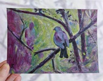 NZ bird painting, 'Kereru Morning' original art to frame, 5x7, small colourful bird art, New Zealand birds, modern impressionist