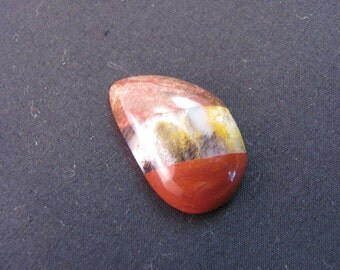 Designer cabochon in Petrified wood