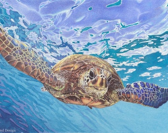 Sea Turtle - mounted print of original watercolour, gouache and acrylic ink painting