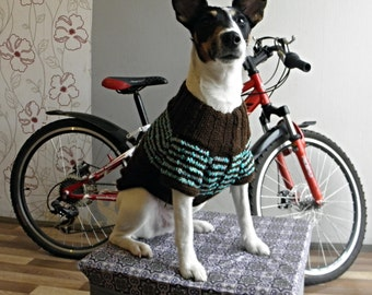 Dog Sweater, Hand Knit Soft . In Chocolate Mint Colour. Warm and Soft Sweater, Medium size pet