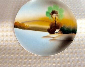 Dish Handpainted Vintage