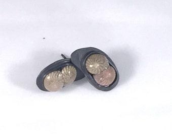 E25 - shell earrings on oxidized sterling silver