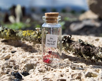 You've got my heart. Tiny message in a bottle. Miniatures. Personalised Gift. Funny Love Card. Valentine Card. Special greeting card.