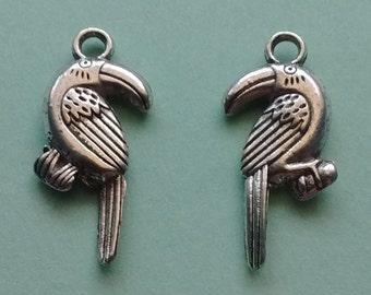 10 Toucan Bird Charms Silver - CS2305