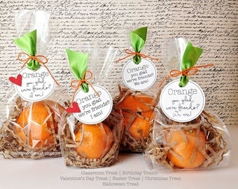 Orange You Glad We're Friends...I Am / We Are Tag / Valentine Treat / Classroom Treat / Birthday Party Favor / Clementine Treat