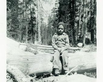"Vintage Photo ""The Bored Camper"" Boy Snapshot Photo Old Antique Photo Black & White Photograph Found Photo Paper Ephemera Vernacular - 198"